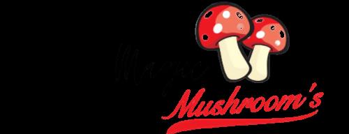 Premium Magic Mushroom
